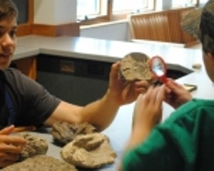 sd_fossils_sm150x1202.jpg