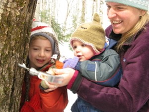 audubon_sugar_on_snow.jpg