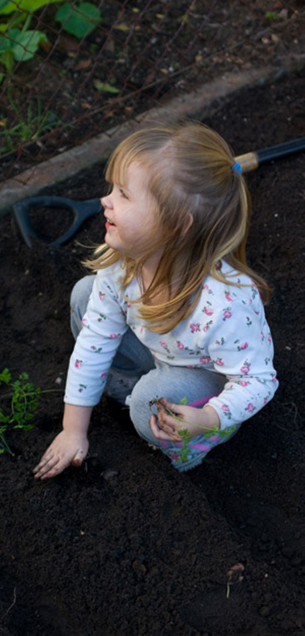 keeping kids safe in the garden and the yard checkup kids vt