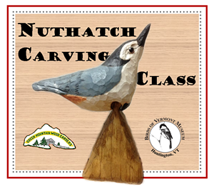 birds_of_vermont-carvingclass_nuthatch.png