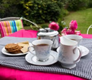 tea-party-garden.jpg