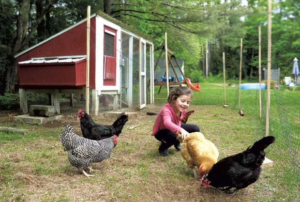 Savannah Small with her chickens