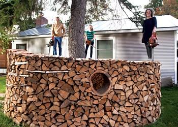 Sculptural Woodpile