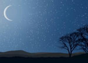 stars_moon_trees.jpg