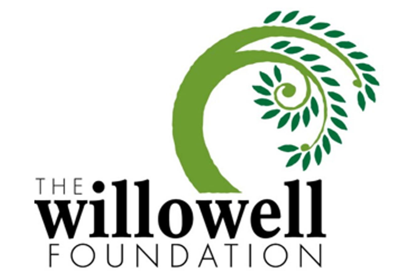 The Willowell Foundation | Addison | Adventure, Visual Arts, Science ...
