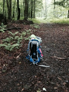 Elise keeps a safe distance while her parents clear a downed tree from a local trail. - TRISTAN VON DUNTZ