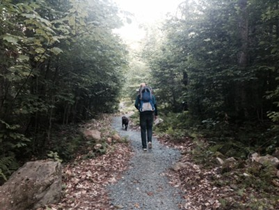 The Telephone Line Trail in Groton State Forest is perfect for parents carrying little ones - SARAH GALBRAITH