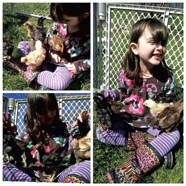Rosie and her chickens