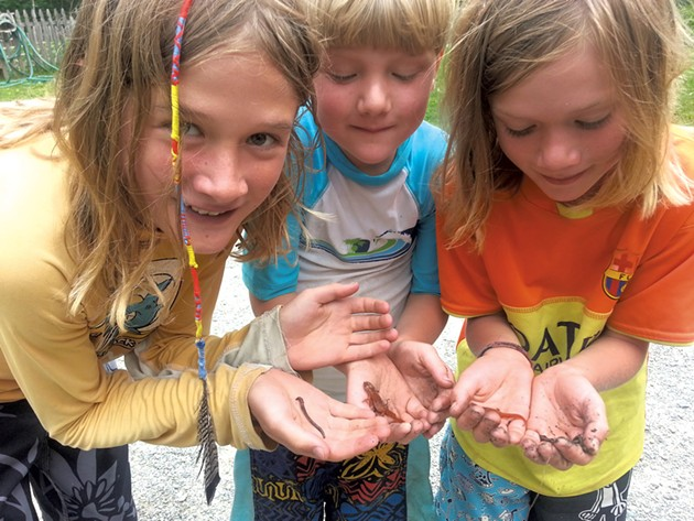 Challenge participants show off small creatures - COURTESY OF VERMONT STATE PARKS