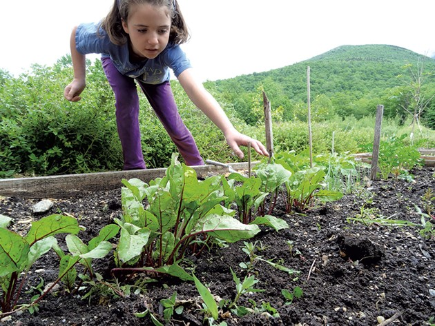 Lucy tending to her family's garden. - LAURA SORKIN