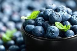 blueberry_2.jpg