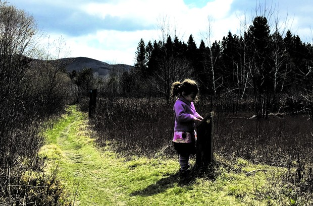 Robert Frost Interpretive Trail - MEGAN JAMES