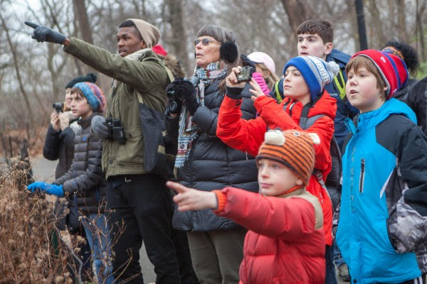 Christmas Bird Count - CAMILLA CEREA/NATIONAL AUDUBON SOCIETY