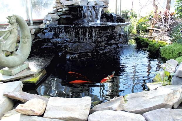 The koi pond - KATIE TITTERTON