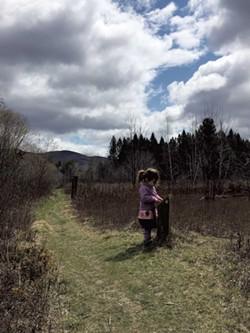 Robert Frost Interpretive Trail - MEGAN JAMES