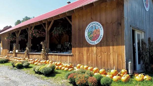Hartshorn's Organic Farm Stand - COURTESY IMAGE