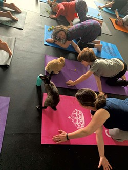 Mira Novak and Grace, Peter and Jill Warrington (top to bottom) enjoy bunnies and yoga - COURTESY OF WATER AND ROCK STUDIO
