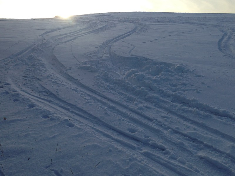 Making ski turns in the afternoon sunlight - SARAH GALBRAITH