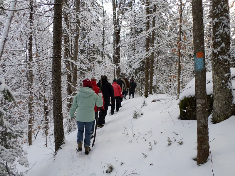 Groton Nature Center - COURTESY OF VERMONT STATE PARKS