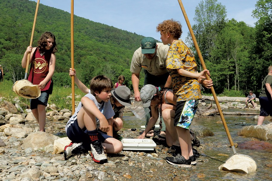 Students look at rainbow and brook trout - TRISTAN VON DUNTZ