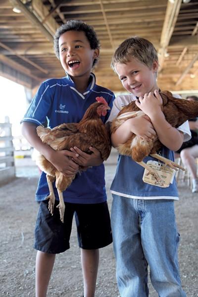 Shelburne Farms - COURTESY