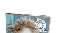 <i>Sweet Pea & Friends: The Sheepover</i> by John and Jennifer Churchman