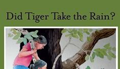 A Cat Tale: <i>Did Tiger Take the Rain?</i>