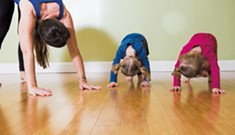 Yoga Pose of the Month: Down Dog/Double Down Dog for the Dog Days of Summer!