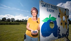 Berries in Charlotte: From Deep Roots to Sweet Roots