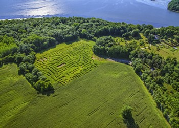 Children in the Corn: An Outing to Fort Ticonderoga's Heroic Maze