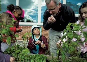 What Happens to School Gardens in the Summer?