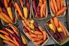 Capital City Thanksgiving Farmers Market