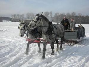 sleigh_rides_3.jpg