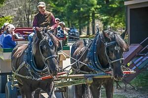 wagon-rides-wed-1.jpg