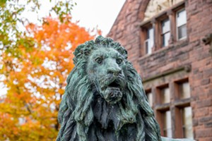 lion_and_autumn_colors.jpg