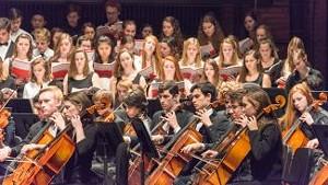 orchestrapalooza_2017_show_page.jpg