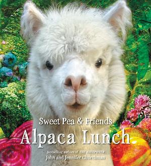 alpaca_web.png