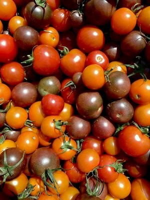 cherry_tomatoes_bfm.png.jpeg