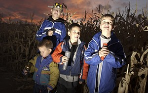 heroic-corn-maze-gallery-2.jpg