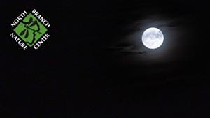 moon-1-3.jpg