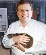 An artist's rendering; really, Jim Strickland isn't that fond of rats. (See text.)