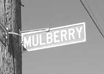 And To Think That I Saw It On Mullberry Street