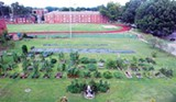 KARYL BUDDINGTON - Bird's-eye view of the U of M's Urban Oasis garden