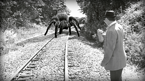 giant-spider02.png
