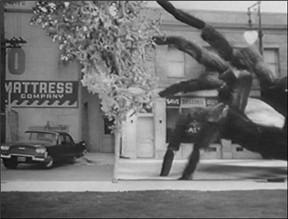 earth-vs-the-spider-1958.jpg