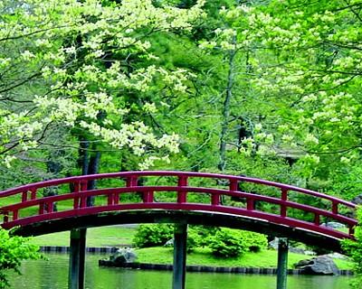 memphis-botanic-garden.jpg