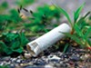 Cigarette butts can have a large impact on wildlife and waterways, according to the Memphis City Beautiful Commission.