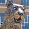 Cincinnati 34, Tigers 21