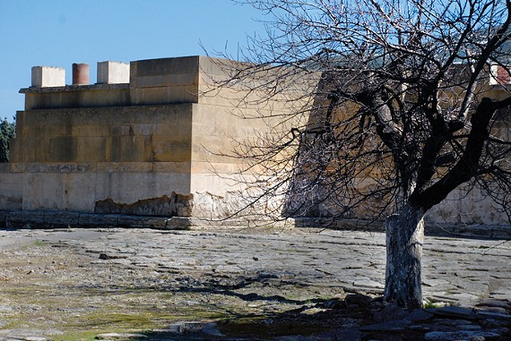 Clark Buchner, Tree in Courtyard, Palace of Knossos, Crete, Greece, at the Memphis College of Art