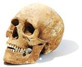 flyby_skull.jpg